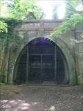 Image for Crescent Wood Tunnel