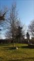 Image for W.I. 60th anniversary tree - Sourton, Devon