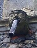 Image for Gargoyles, All Saints - Dickleburgh, Norfolk