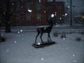 Image for White Tail Deer, Girard, PA