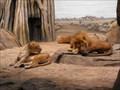 Image for Milwaukee County Zoo Lucky 7