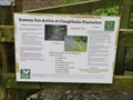 Image for Claughbane Woods - Ramsey, Isle of Man