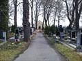 Image for Kyjsky hrbitov / Praha - Kyje, CZ