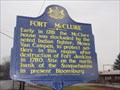 Image for Fort McClure