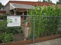 Image for Holy Cross Lutheran Community Garden - Salem, Oregon