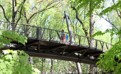 This picture of the bridge is from the Atlanta Botanical Garen website.