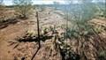 Image for BM3006 Anne Beadell Highway South Australia