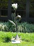 Image for Blossom - Olathe, Ks.