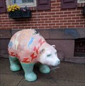 Image for Snooooozzzzzzzu-Bear - Boyertown, PA