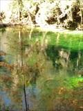Image for Blue Spring - Orange City, FL