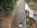 Image for Los Gatos Creek Boardwalk - Campbell, CA
