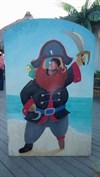 Ladybug's a pirate?