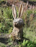 Image for Rabbit - Ecklands, UK
