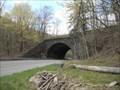 Image for Muleshoe curve stone bridge - Juniata Township