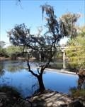 Image for Branford Spring - Ivey Memorial Park, Branford, Florida, USA.