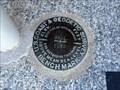 """Image for BM0252 - """"G 311"""" bench mark disk - Giddings, TX"""