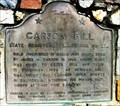 Image for CA Historic Marker: Carson Hill