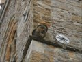 Image for Gargoyle - St Laurence's Church, Brafield-on-the-Green, Northants.