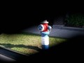 Image for All american hydrant