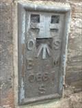 Image for Flush Bench Mark - St Llawddog's Church - Cenarth, Carmarthenshire, Wales