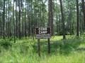 Image for Osceola National Forest - Olustee, FL