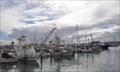 Image for Driscoll's Wharf Marina ~ San Diego, California