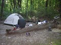 Image for Marble Springs Campsite, AT Nr Snowden, VA, James River Face Wilderness