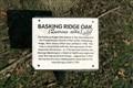 Image for Basking Ridge Oak - Unionville, MO