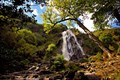Image for Powerscourt Falls, Enniskerry, Co Wicklow, Ireland