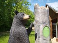 Image for Black Bear - Liberty MetroPark, Twinsburg, Ohio