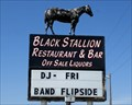 Image for The Black Stallion - Hampton, MN.