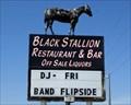 Image for The Black Stallion - Hampton, MN.