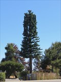 Image for Almaden Expressway Cell Tower - San Jose, California