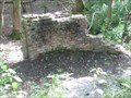 Image for Ruins - Wood near Goswell End, Harlington, Bedfordshire, UK