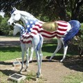 Image for Star and Spirit - Wichita Falls, TX