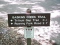 Image for Baskins Creek Trail (south end) - Great Smoky Mountains National Park, TN