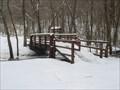 Image for Troop 55 Walking Bridge