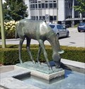 Image for Bronze Horse on a Fountain - Kloten, ZH, Switzerland