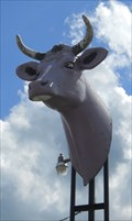 Image for The Purple Cow - MAD COW - Waynesboro VA
