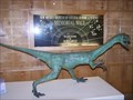 Image for Coelophysis - New Mexico Museum of Natural History and Science