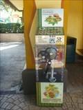 Image for Safari of Fun Penny Smasher - Busch Gardens, Tampa, FL.