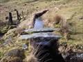 Image for Stone Clapper, Devonport Leat, Beardown, Dartmoor