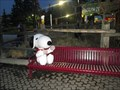 Image for Snoopy on a Bench - Canada's Wonderland - Vaughan, ON