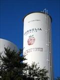 Image for Cornelia S Municipal Tank [ED1845]