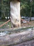 Image for Tree Trunk Fountain - 'Plenterwald' Freudenstadt, Germany, BW