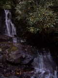 Image for Laurel Falls
