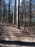 Image for Allschwiler Wald - Allschwil, BL, Switzerland