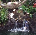 Image for Jungle Cruise Entrance Fountain - Anaheim, CA