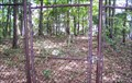 Image for Abandoned Cemetery, Little Hall Recreation Area - Gainesville, GA