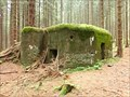 Image for Pillbox IX/137/A-180Z - Jeseniky Mountains, Czech Republic
